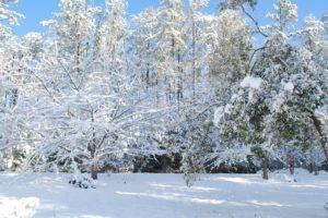 snow-day-300x200